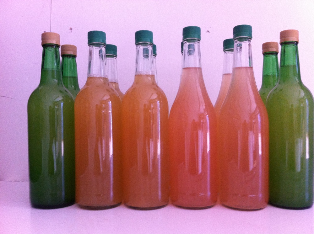 Fresh Discovery Apple Juice