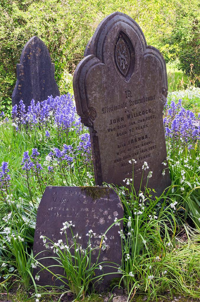 spring flowers graveside
