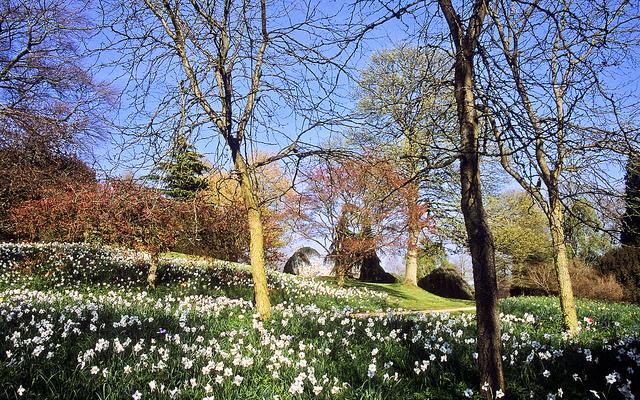 Ascott House Gardens, Buckinghamshire, UK | National Trust garde