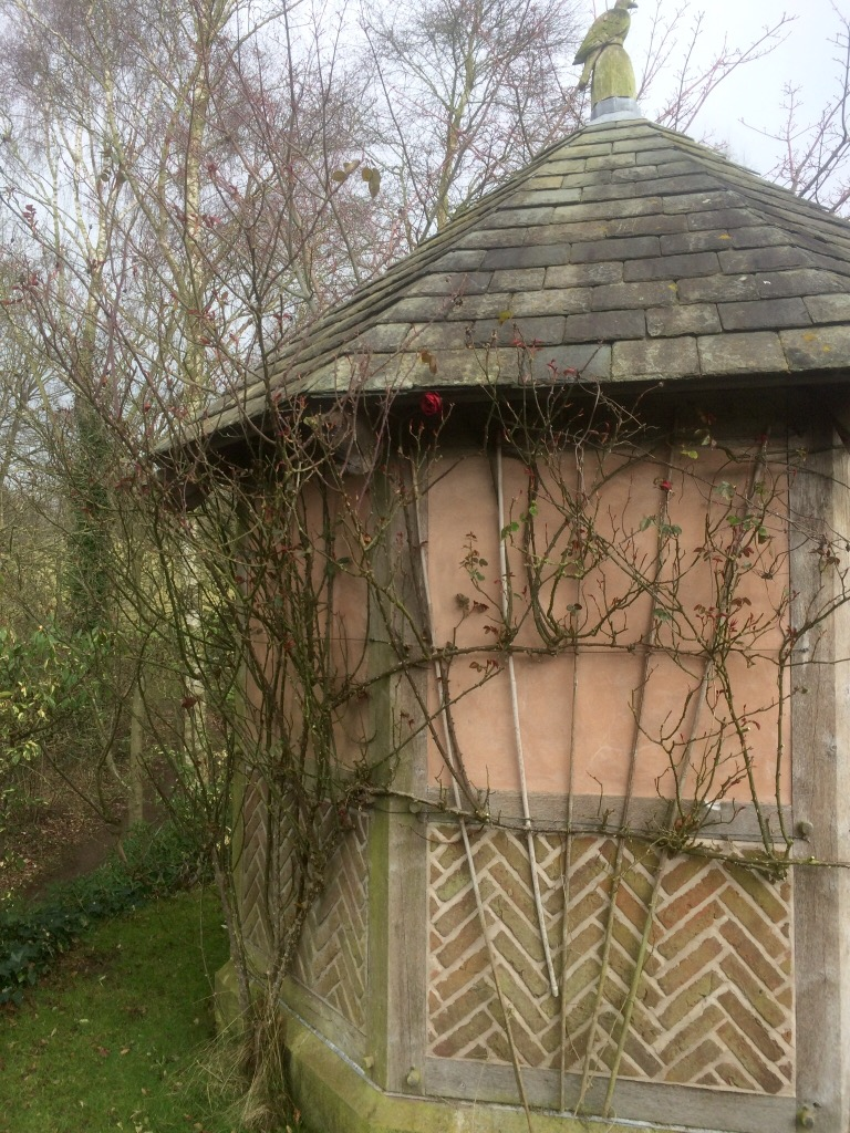 Show Your Climbing Roses Some Romantic Love February